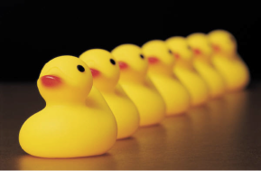 Business Formation – Getting Your Ducks in a Row